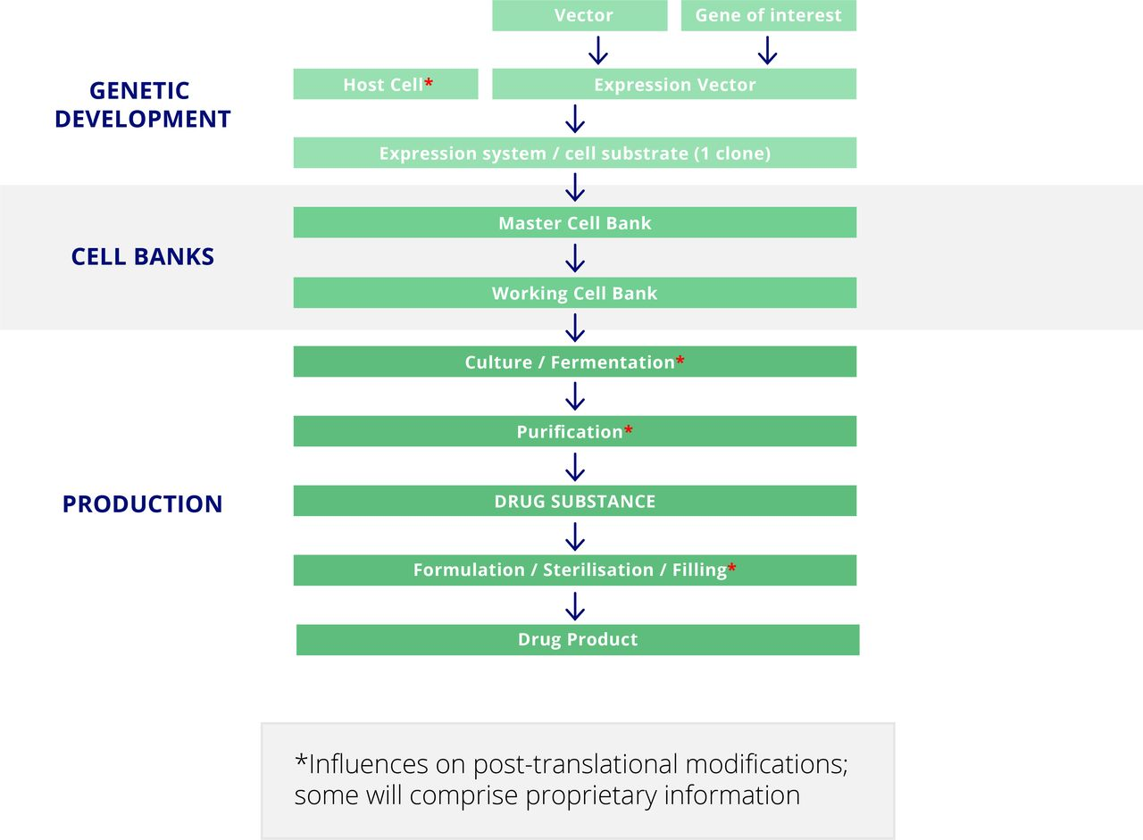 The Biosimilar Approval Process  How Different Is It